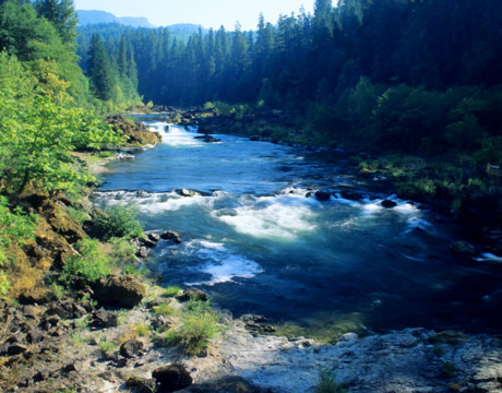 Deschutes-river-oregon-lg